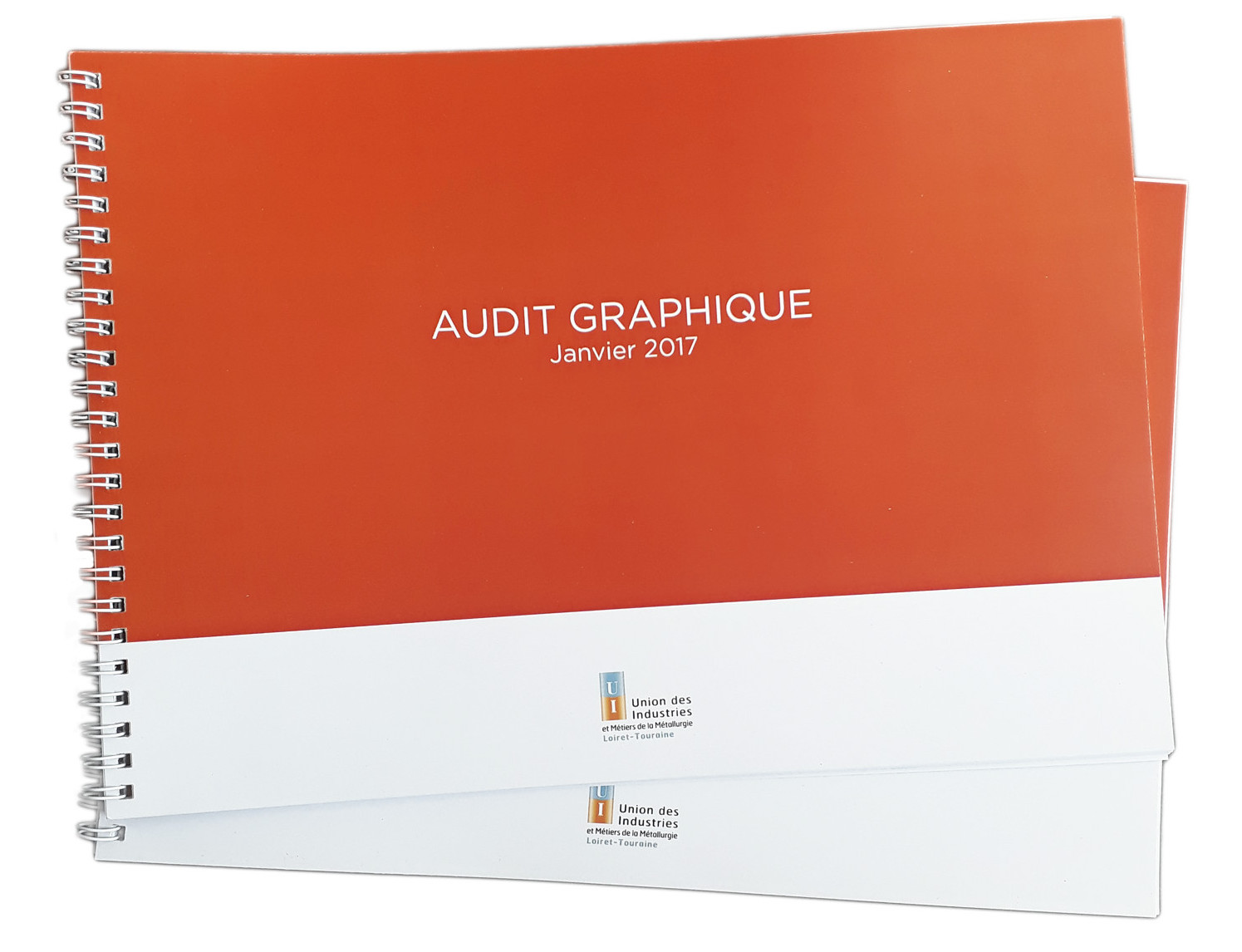 AUDIT GRAPHIQUE UIMM